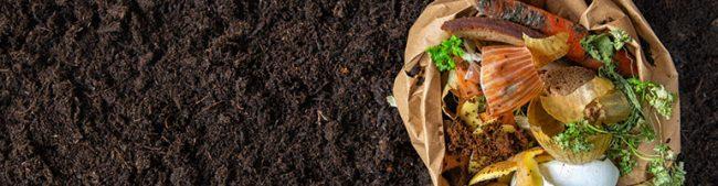 average restaurant food waste - composting