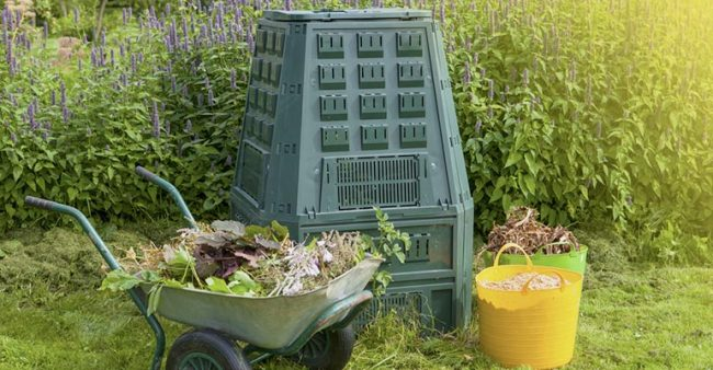 what can you put in compost at home?